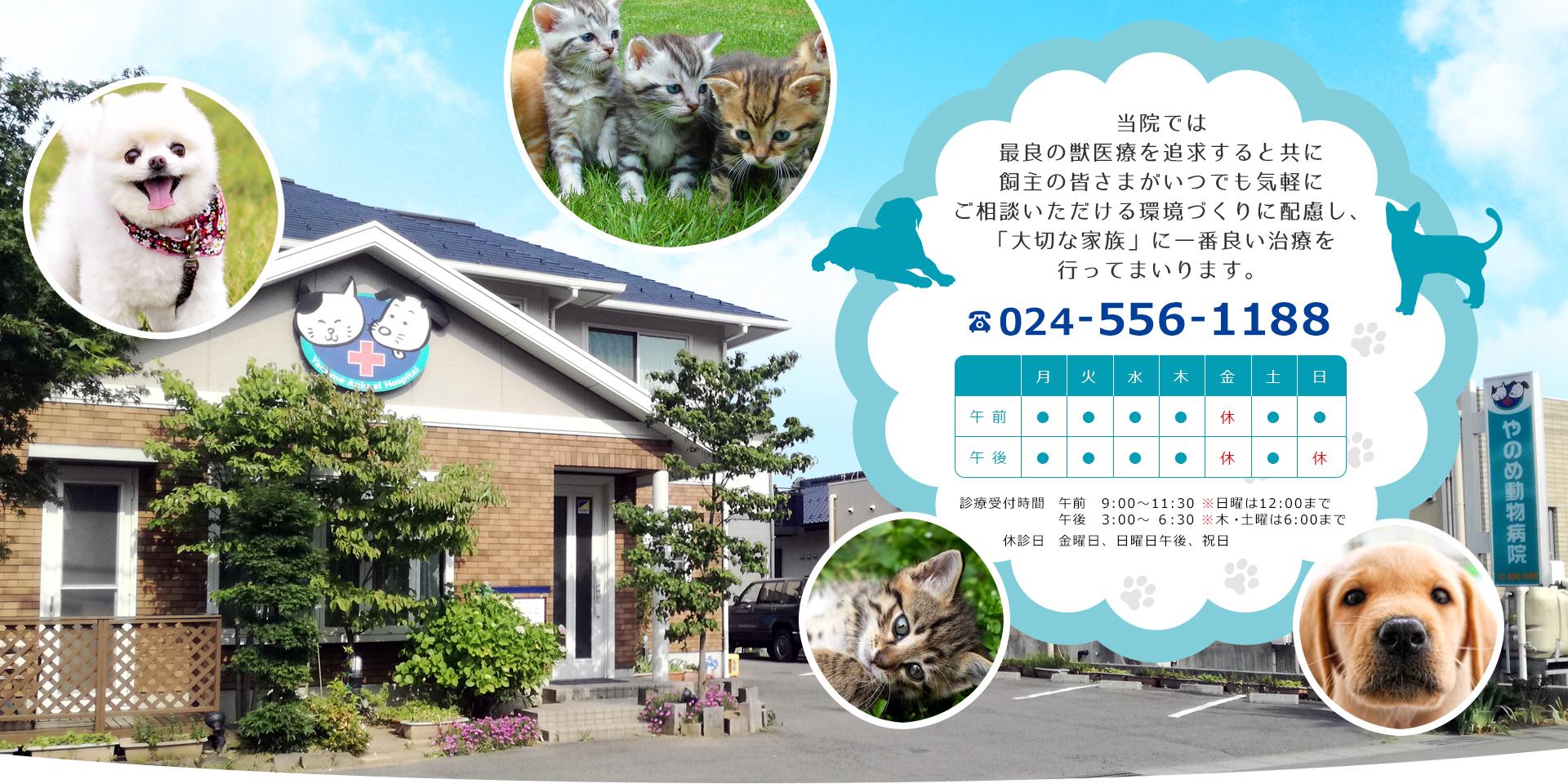 福島市 やのめ動物病院公式ホームページ(日曜対応)